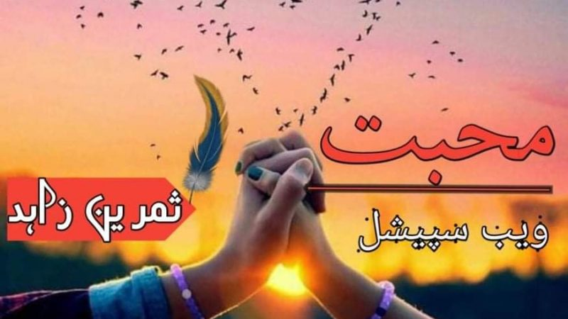 Muhabbat By Samreen Zahid Continue Novel Epi No 08