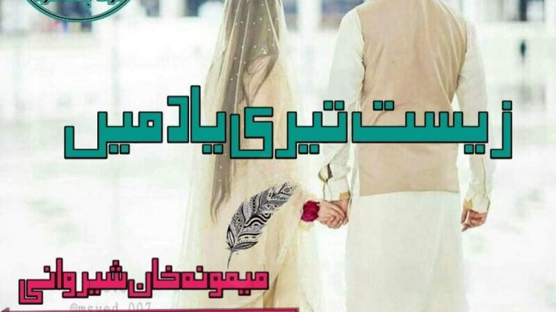 Zist Teri Yaad Main By Memoona Khan Sherwani Continue Novel Epi No 03